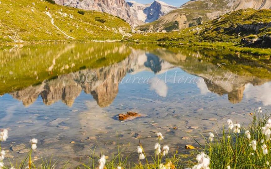 Busreis Pink Dolomites