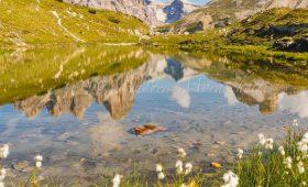 Coach Tour - Pink Dolomites