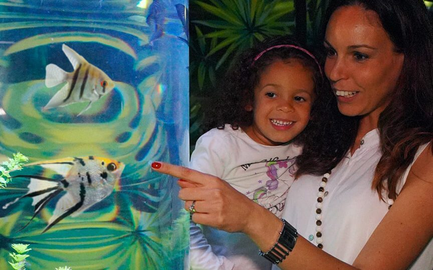 Buy Tickets Sea Life Gardaland